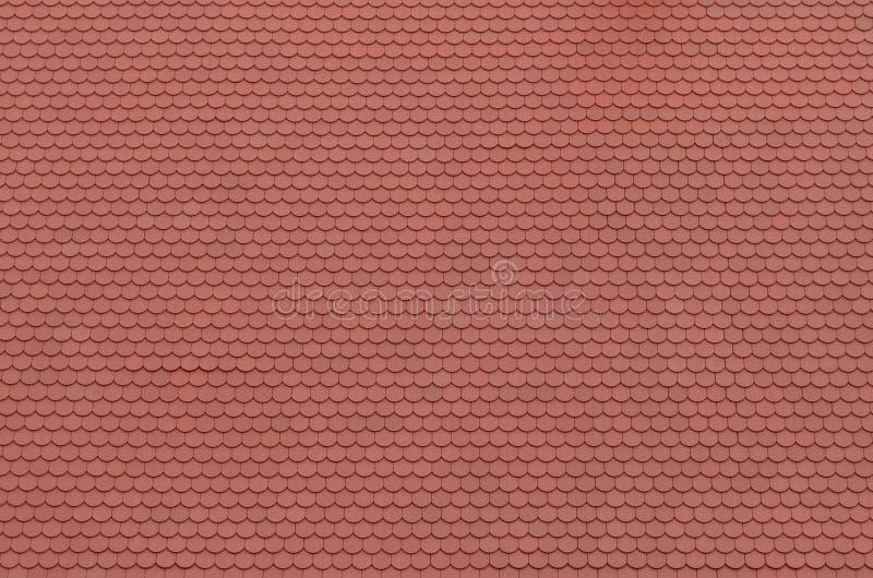 屋顶,瓦 免版税图库摄影