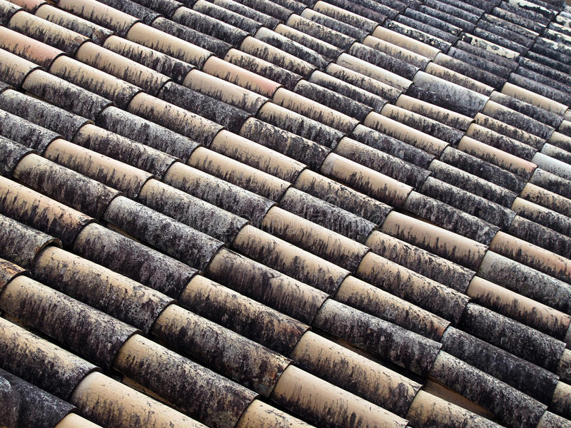 Download 屋顶 库存图片. 图片 包括有 遗产, 建筑, 弯曲, 自然, 面包渣, 退色, grunge, 粗砺, 顽皮地 - 22353807