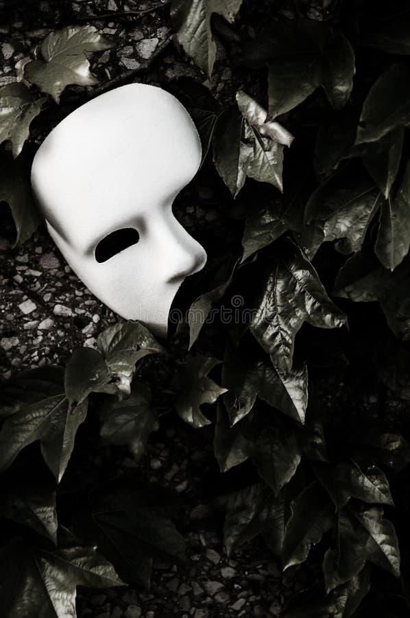 屏蔽化妆舞会歌剧虚拟件 图库摄影