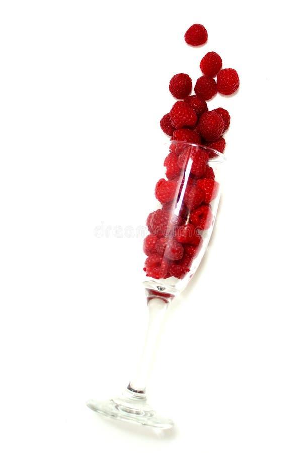 展开莓 免版税库存照片