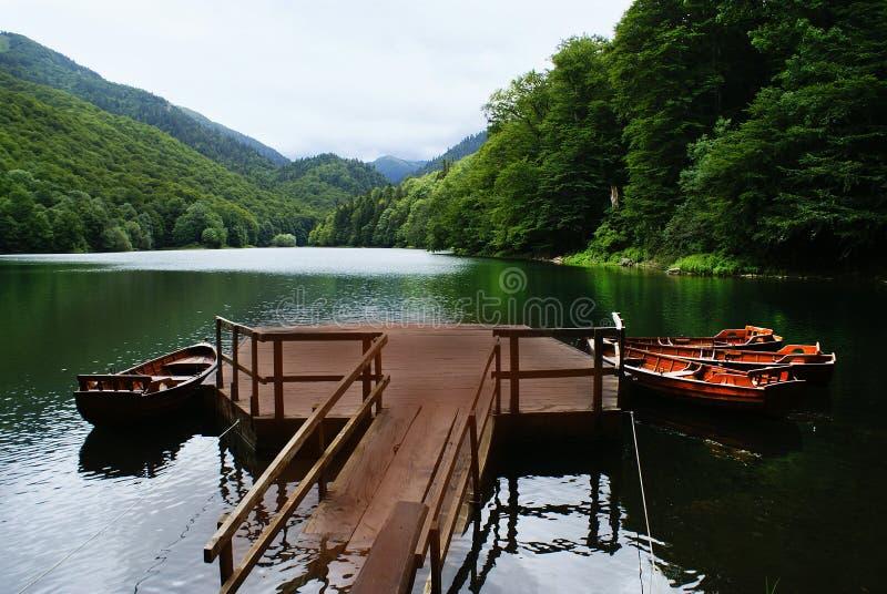 黑山、山和湖风景  免版税库存照片