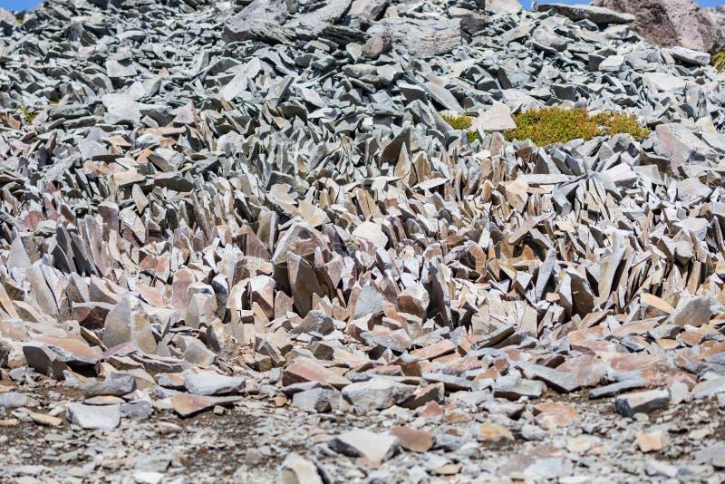 山上一堆不寻常的岩石 华盛顿州赖尼尔国家公园 免版税图库摄影