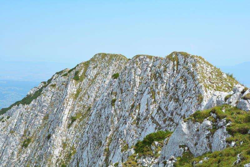Download 山上面在夏天 库存照片. 图片 包括有 盖子, 高涨, 蓝色, 冰砾, 本质, 和平, 通过, 环境, 草甸 - 72361342