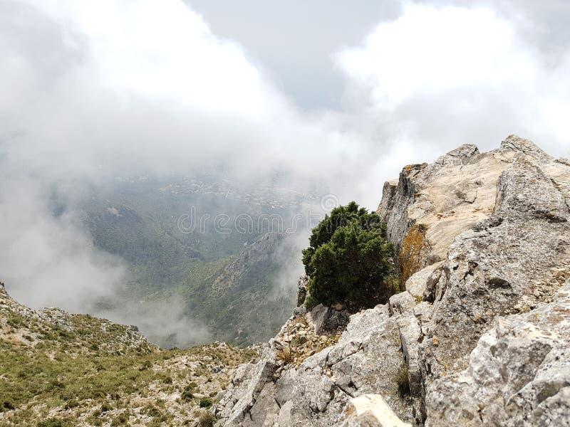 山上面在马尔韦利亚西班牙 库存图片