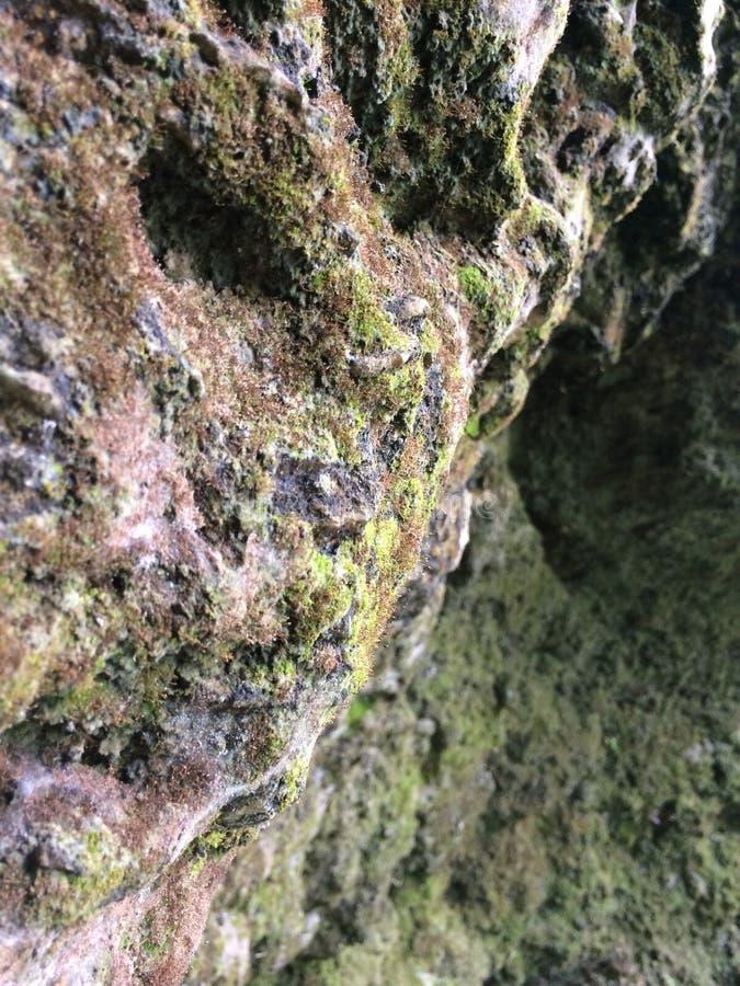 山与绿色青苔的岩石摘要 免版税库存照片