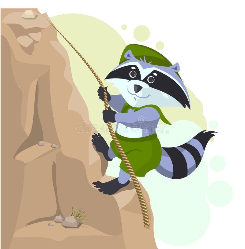 登山人下降的绳索 侦察员浣熊攀登岩石 向量例证