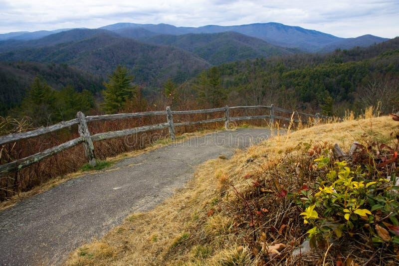山俯视路径 库存照片