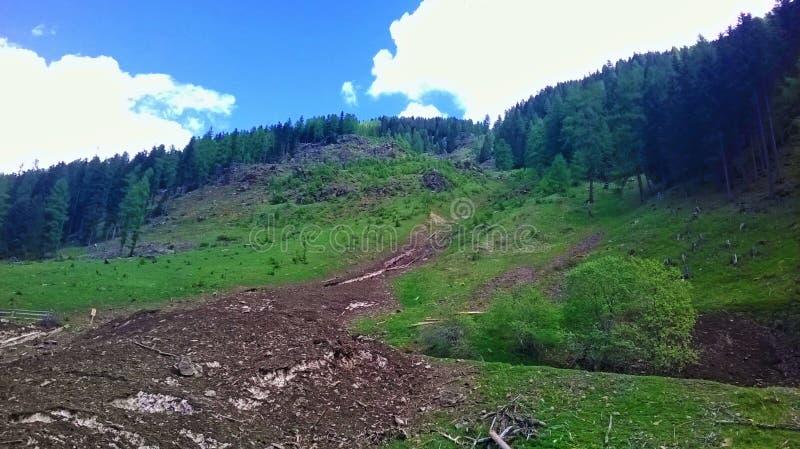 山全景 E 峰顶和山植被的全景照片 图库摄影