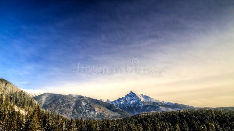 山冬天风景视图, Krivan,斯洛伐克,东欧 库存图片