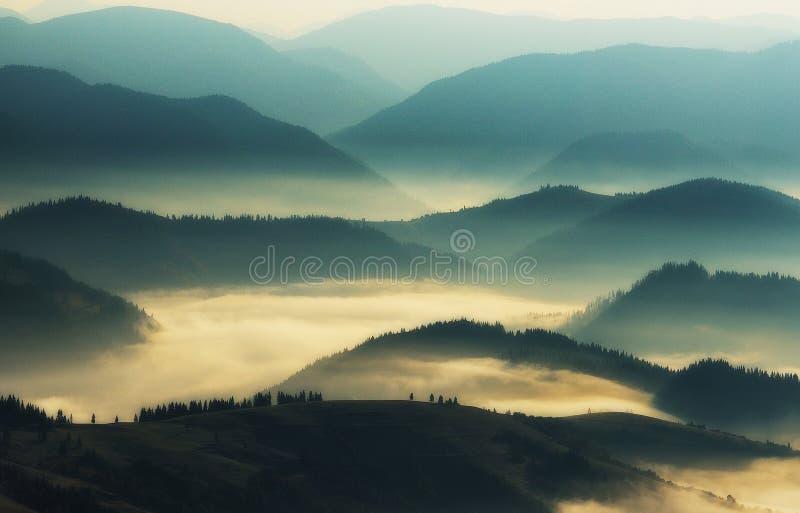 山剪影 秋天有薄雾的早晨 黎明在喀尔巴汗 免版税库存照片