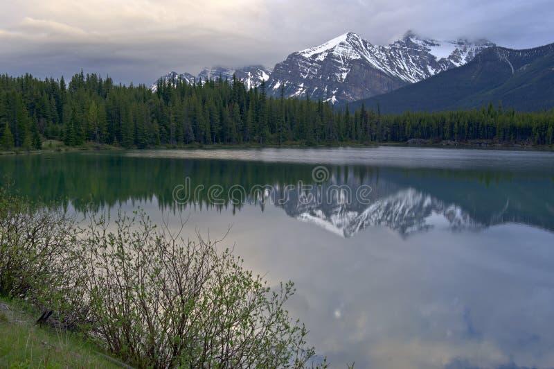 山反射在湖赫伯特 免版税库存图片