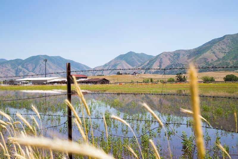 Download 山反射犹他农场土地 库存照片. 图片 包括有 反映, 巴比土酸盐, 开放, 远景, 横向, 充斥, 浩大 - 62526374