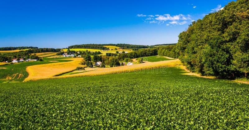 绵延山和农田看法在农村约克县, Penn 库存图片