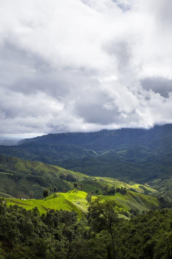山和密林在(南)泰国 图库摄影