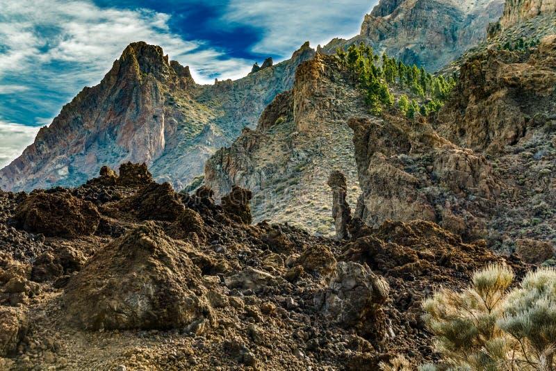 山和松树森林在火山泰德峰附近,部分盖由云彩 明亮的天空蔚蓝 泰德峰国立公园,特内里费岛, 图库摄影