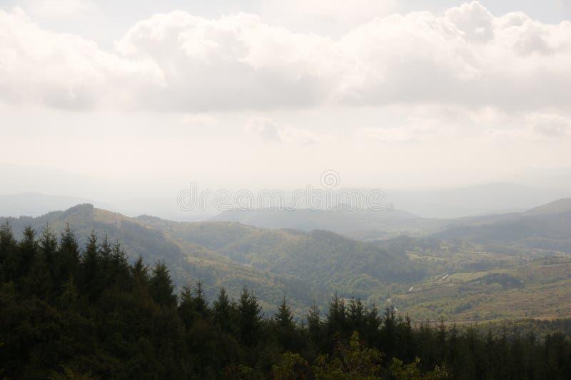 山和森林全景  免版税库存照片