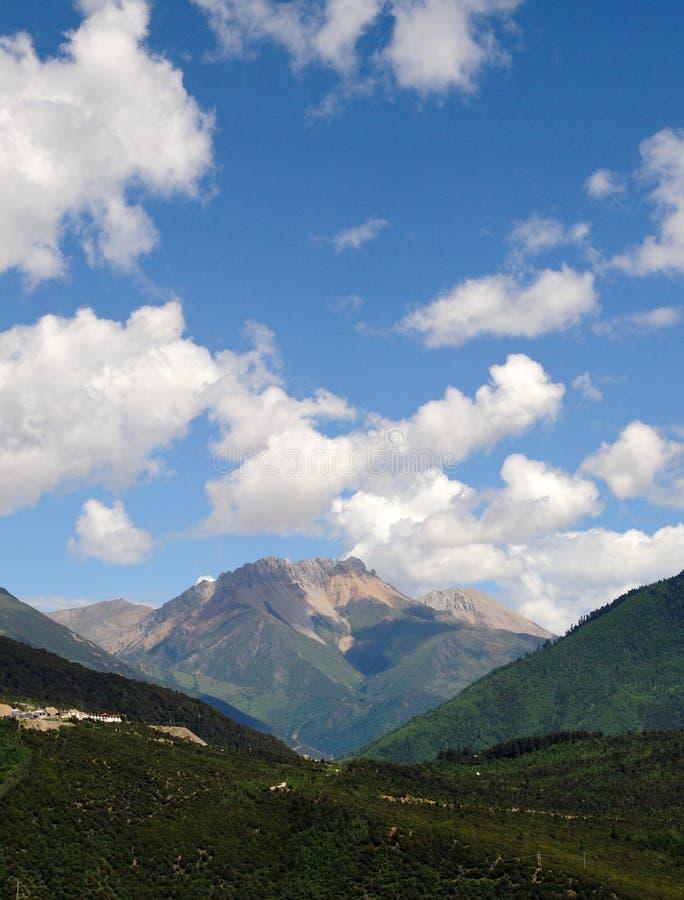 山和森林 库存图片
