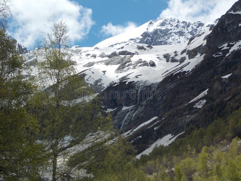 山和森林 图库摄影