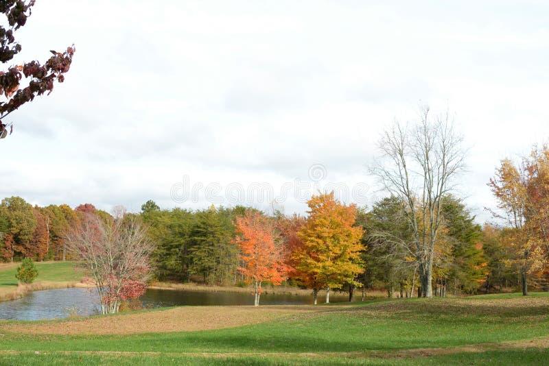 山和湖边平地风景在秋季是一次五颜六色的冒险 库存图片