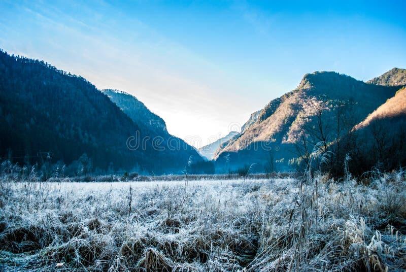 山和白色草坪 免版税库存照片