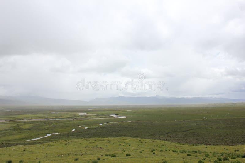 山和草原 图库摄影