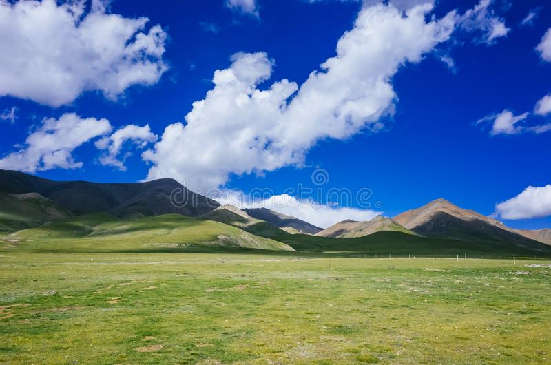 山和草甸在祁连山,青海,中国附近 免版税图库摄影
