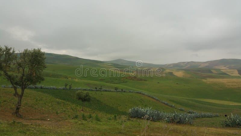 山和镇区域fes,摩洛哥 免版税库存图片