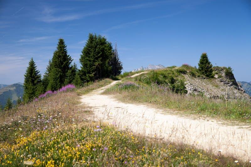山土路在法国阿尔卑斯 免版税库存照片