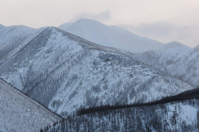 山在冬天 免版税图库摄影