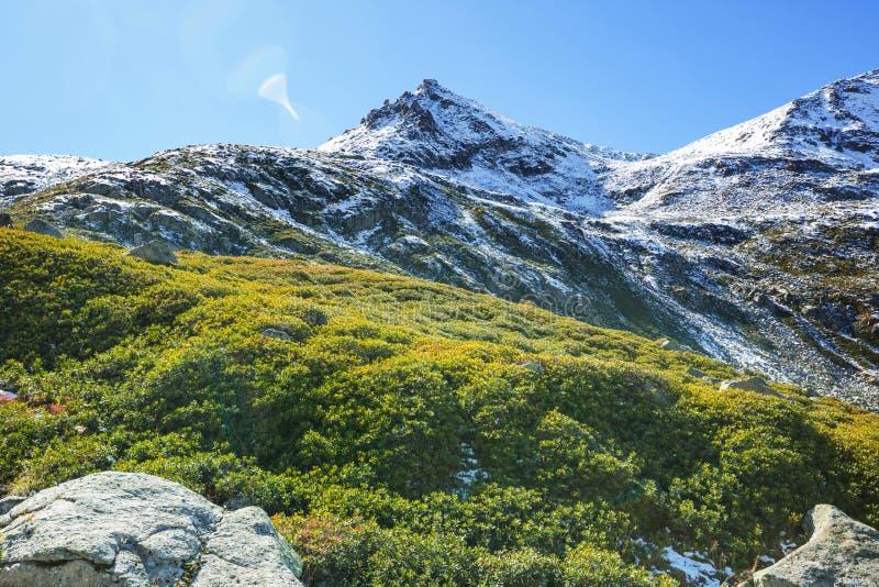 山在土耳其 库存照片