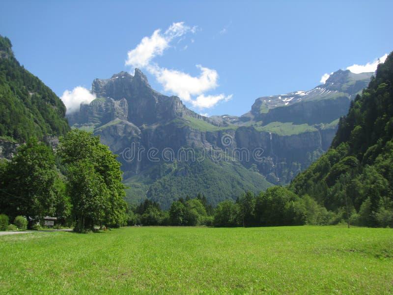 山在夏天 免版税库存照片