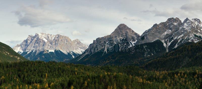 山在奥地利阿尔卑斯 免版税库存图片