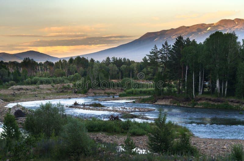 山在日落的河和林木,阿尔泰山,哈萨克斯坦 免版税库存照片
