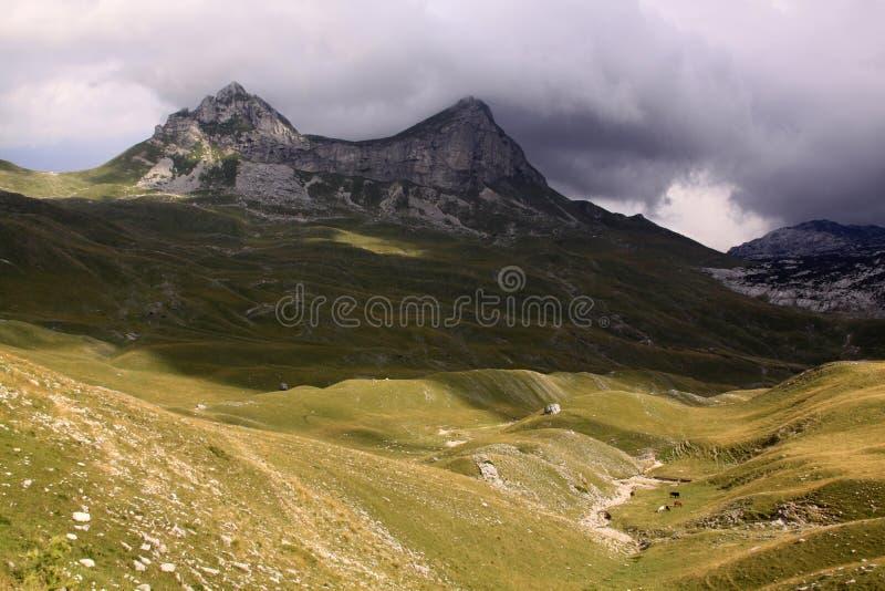 山在杜米托尔国家公园国家公园,黑山 免版税库存照片