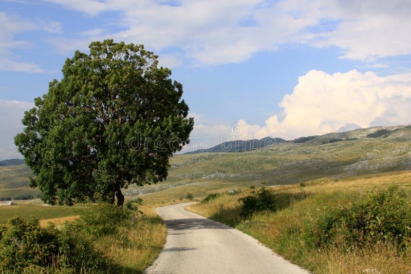 山在杜米托尔国家公园国家公园,黑山 库存照片