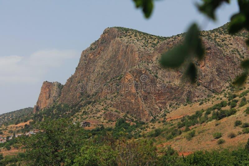山在森林里 免版税库存照片