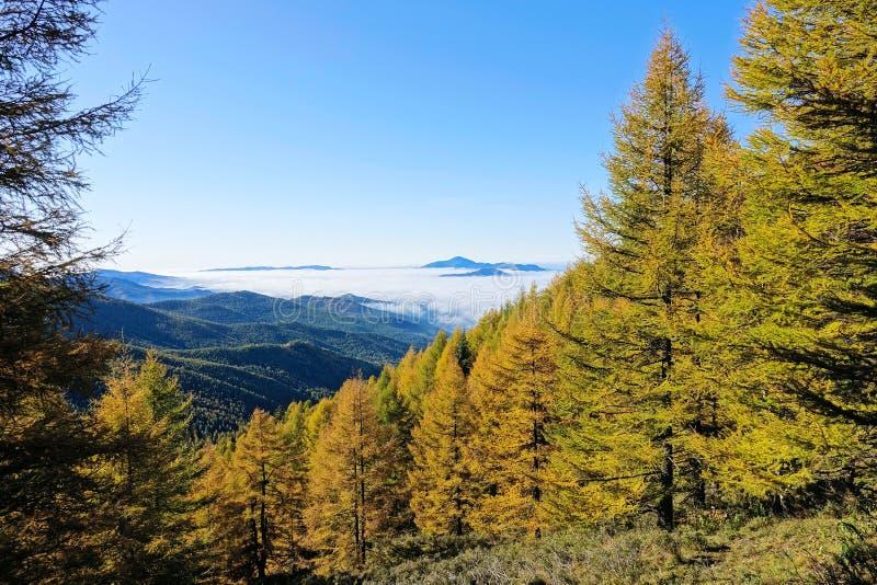 山在秋天 库存照片