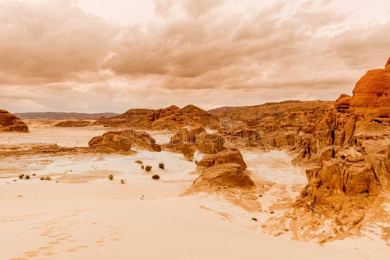山在西奈沙漠埃及 库存图片