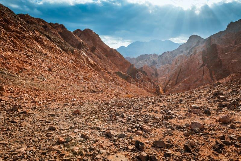 山在西奈沙漠埃及 库存照片