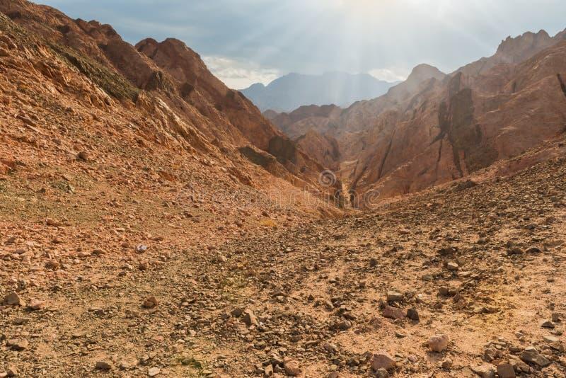 山在西奈沙漠埃及 免版税图库摄影