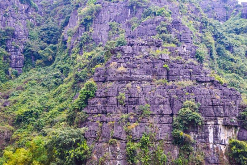 山在越南,关闭岩石在峭壁面孔一边在山和围拢由绿色树在河内, 图库摄影