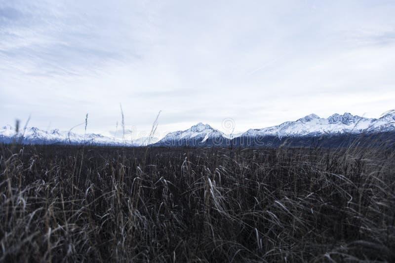 山在阿拉斯加 库存图片