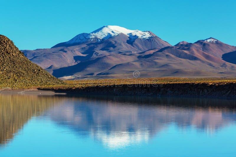 山在玻利维亚 库存图片