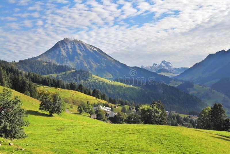 山坡的绿色高山草甸 免版税图库摄影