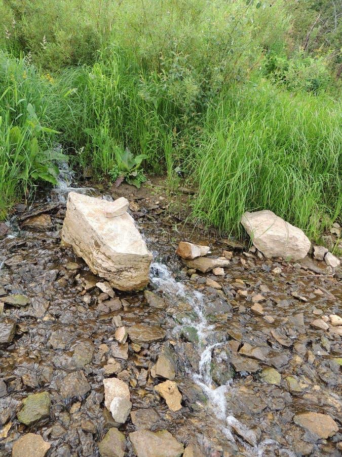 Download 山坡连续溪石头草 库存照片. 图片 包括有 运行, 山坡, 灌木, 小河, 夏天, 陆运, 绿色, 石头 - 72358754