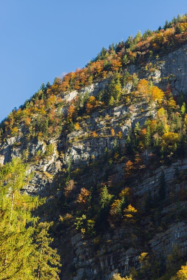 山奥地利在秋天 库存照片