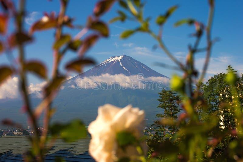 山富士与花框架的早晨 免版税库存照片