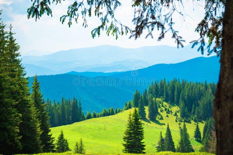 山小山美好的山风景,远足在山 库存照片