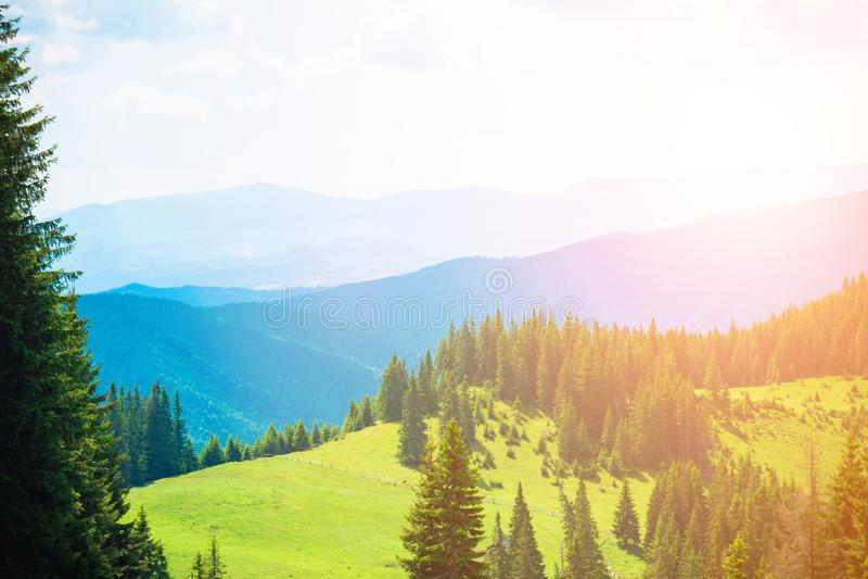 山小山美好的山风景,远足在山 库存图片