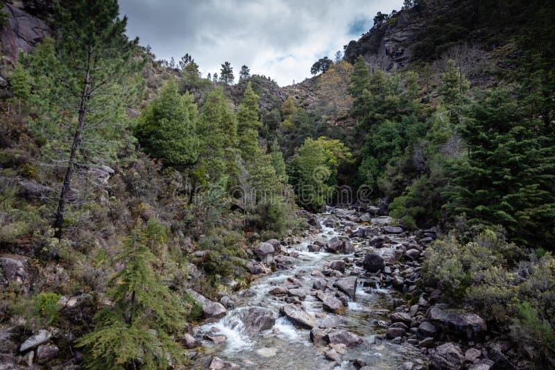 山小河在佩内达Geres,葡萄牙 免版税库存照片